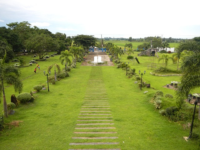 Can Former Filipino Citizens Own Land in the Philippines
